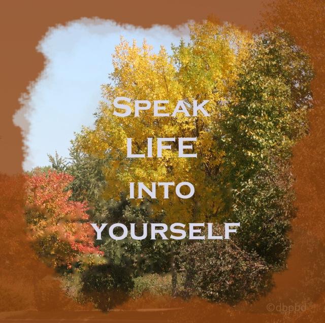 9529 Speak Life